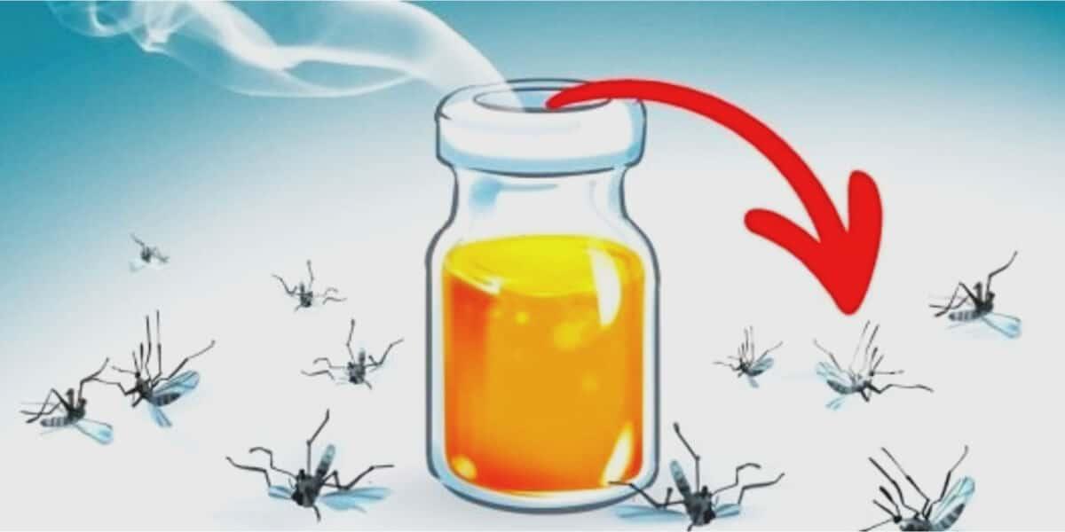 combatir mosquitos